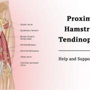 The Proximal Hamstring Tendinopathy Group